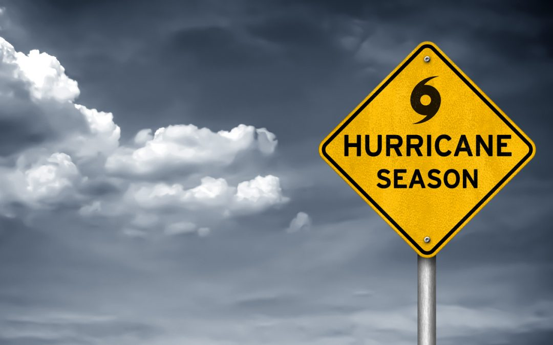 The Top Hurricane Stocks to Consider Right Now