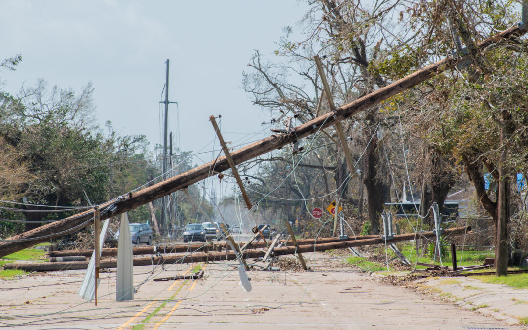 The Top Hurricane Stocks to Buy and Hold Every Year