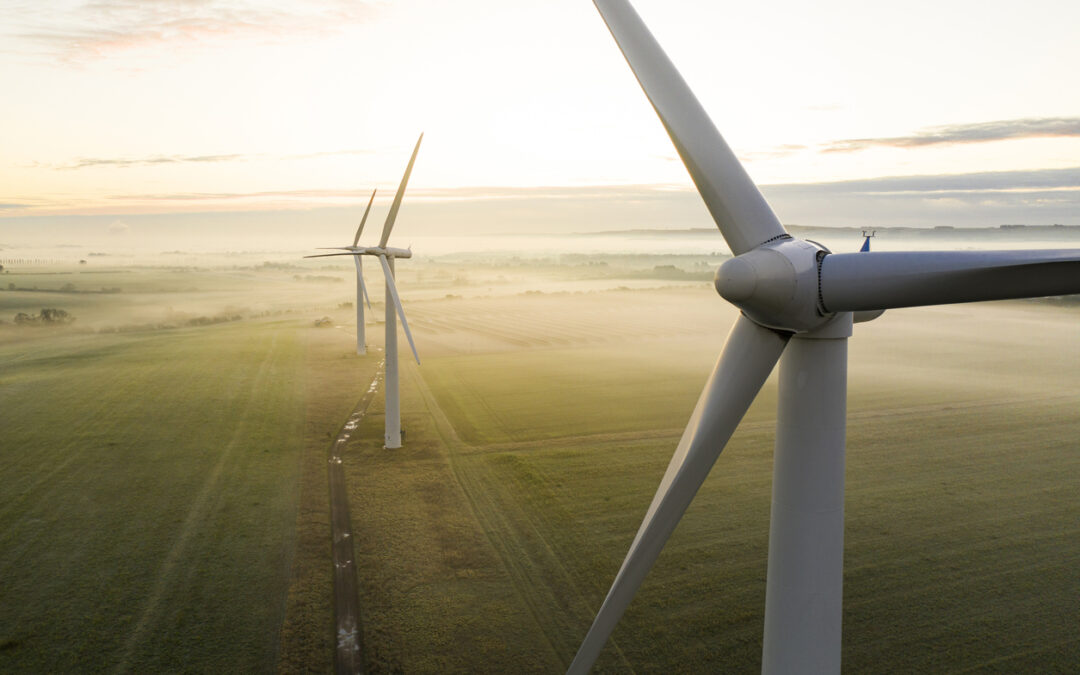 This Could be a Major Catalyst for Green Stocks